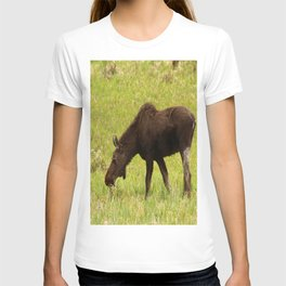 Young Moose T-shirt