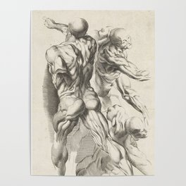 Anatomical study of three figures, 17th Century Poster