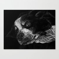 border collie Canvas Prints featuring Border Collie by Taylored Petraits