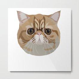Exotic Short Hair Cat Illustration Art  Metal Print