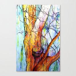 """""""Berkeley Eucalyptus"""" Canvas Print"""