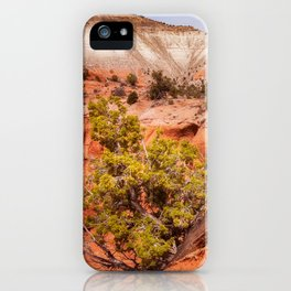 Hanging on the cliff at Kodachrome Basin State Park iPhone Case