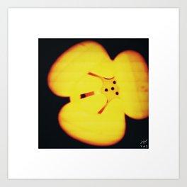 Flower bulb Art Print