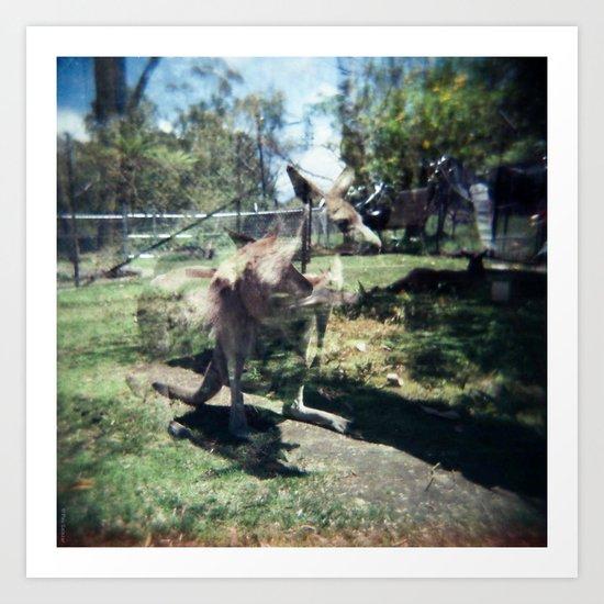 Kangaroo Art Print