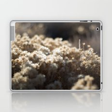 Winter's Asters Laptop & iPad Skin