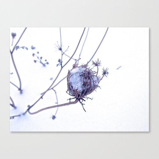 Traces of summer Canvas Print