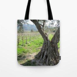 Olive tree in vineyard Tote Bag