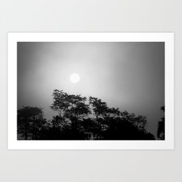Sunset through fog // Borneo Art Print