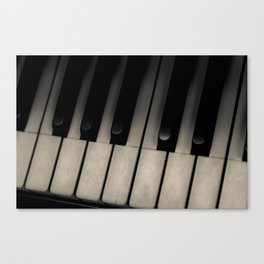 The Ivories Canvas Print