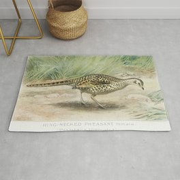 Ring-Necked Pheasant Female (Phasianus Torquatus) illustrated by JL Ridgway (1859-1947) and WB Gille Rug
