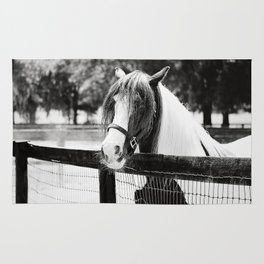 Extraordinary Black & White Rug