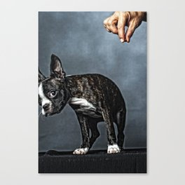 But I Didn't Mean To... Canvas Print