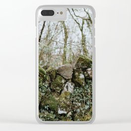 When Abounding Hedges Ring Clear iPhone Case