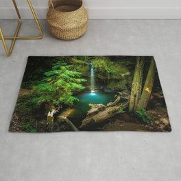 Big Basin Redwoods State Park California United States Ultra HD Rug