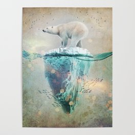 Polar Bear Adrift Poster