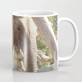 An Elephant Face Coffee Mug