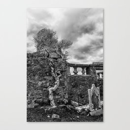 Old Tree in Cill Chriosd Churchyard Canvas Print