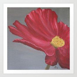 Crimson Red Garden Cosmos Art Print