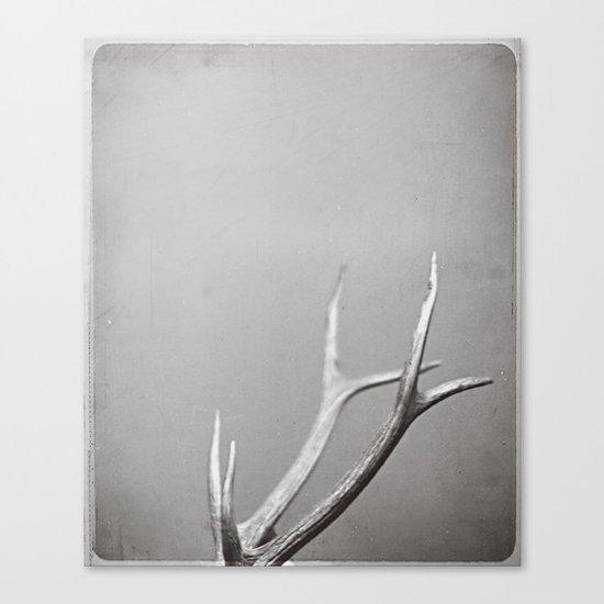 fig. 01 | antlers Canvas Print