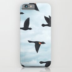 red-winged blackbirds and blue sky iPhone 6s Slim Case