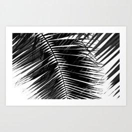 Tropical Darkroom #146 Art Print
