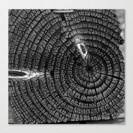 Nature's Clock Canvas Print
