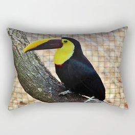 Swainson's Toucan Rectangular Pillow