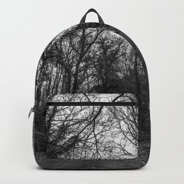 Monochromatic forest path Backpack