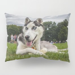 Blue Eyes, Gray Skies Pillow Sham