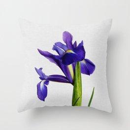 Iris Still Life, Flower Photography Throw Pillow