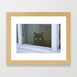 Window to the Wild Framed Art Print