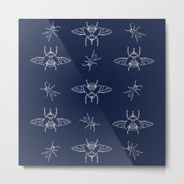 Coleoptera II Metal Print