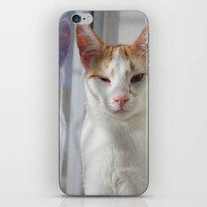Wink iPhone & iPod Skin