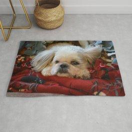 Denali - Loyal Lap-Dog Rug