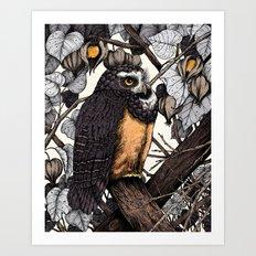 Spectacled Owl Art Print