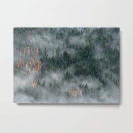 Wilderness Metal Print