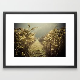 Autumn grapes vine Framed Art Print