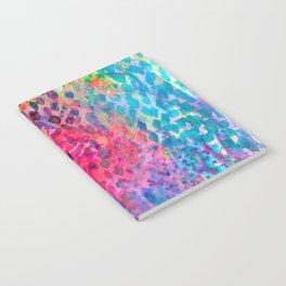 Boa Notebook