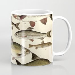 Vintage Illustration of Various Fishes (1902) Coffee Mug