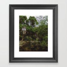 Sabino Canyon Creek Framed Art Print