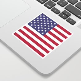 USA flag - Hi Def Authentic color & scale image Sticker