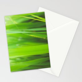 Summer is green Stationery Cards