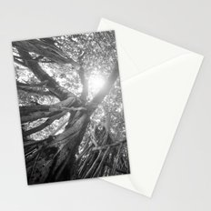 Banyan Tree Stationery Cards