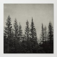 the edge of the forest Canvas Print