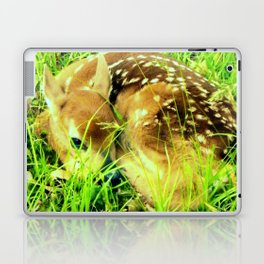 Hidden in the High Grass Laptop & iPad Skin