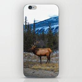 Jasper Local- Aka Mr. Male Elk/Wapiti iPhone Skin