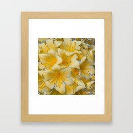 IVORY COLOR CLIVIA FLOWERS Framed Art Print