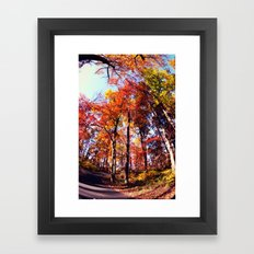 Fisheye Fall II  Framed Art Print