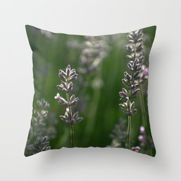 Lavender Buds and Bug Throw Pillow