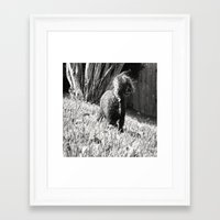 poodle Framed Art Prints featuring Poodle by Quotably Yours
